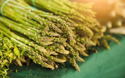 Las Esparragos, la verdura protagonista de Febrero